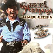 Concierto de ??xitos by Gabriel Arriaga