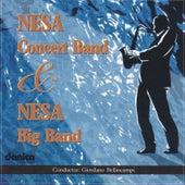 Nesa Concert Band & Nesa Big Band by Various Artists