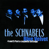 Blue Velvet by The Schnabels