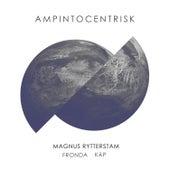 Ampintocentrisk by Magnus Rytterstam