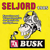 TA Busk Seljord 1985 de Various Artists