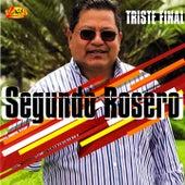 Triste Final by Segundo Rosero