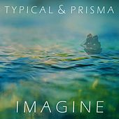 Imagine by Typical
