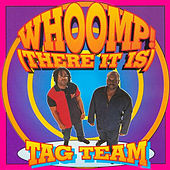 Whoomp! There It Is von Tag Team