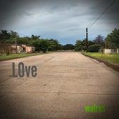 LOve de Walrus