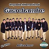 Adios Amor by Orquestra Internacional Guachambe