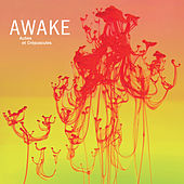 Aubes et crépuscules by Awake