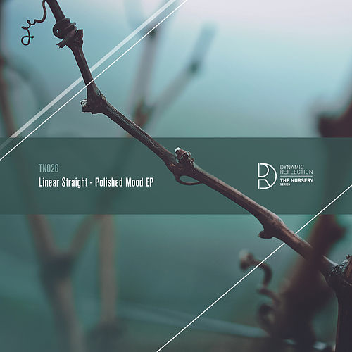 Polished Mood EP by Linear Straight