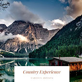 Country Experience de Various Artists