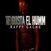 Te Gusta El Humm de Raffy Cache