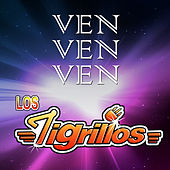 Ven Ven Ven von Los Tigrillos