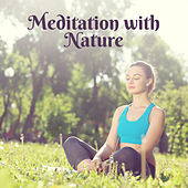 Meditation with Nature – New Age Nature Sounds for Perfect Yoga Session de Zen Meditation and Natural White Noise and New Age Deep Massage