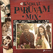 Kadhal Paruvam Mix by Various Artists