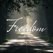 Freedom de Sleeper