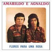 Flores para uma Rosa de Amarildo e Agnaldo