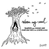 Warm My Soul (Higher Light Remix) de Blundetto
