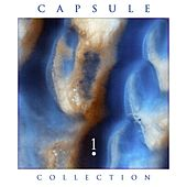 Capsule Collection • 1 von Various Artists