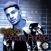 Picture Perfect de Gattison