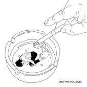 Samurai by Ora The Molecule