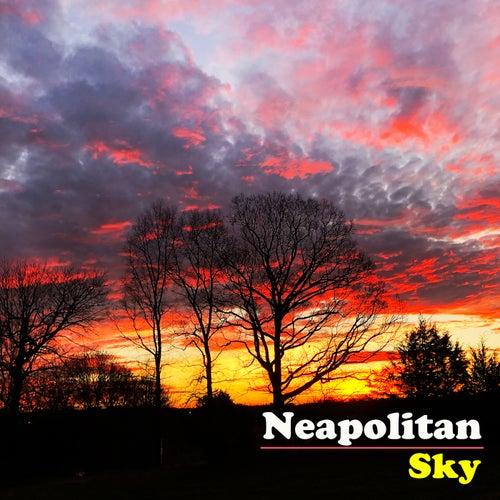 Neapolitan Sky de The Avett Brothers