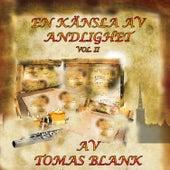 En Känsla av Andlighet, Vol. 2 by Tomas Blank