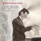 Sorgenfri de Morten Gunnar Larsen