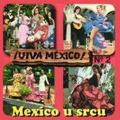 Mexico u srcu by Various Artists