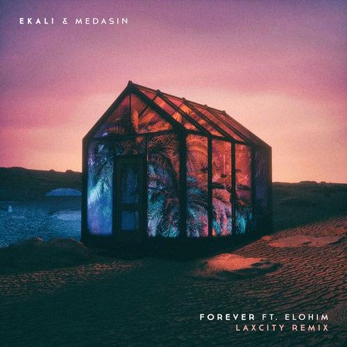 Forever (feat. Elohim) (Laxcity Remix) by Ekali
