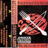Terrorismo Kasero by Sekta Core