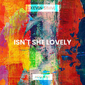 Isn't She Lovely (Acoustic) de Kevin Simm