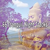 66 Tranquil Night Tracks de Nature Sounds Artists