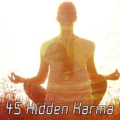 45 Hidden Karma von Lullabies for Deep Meditation