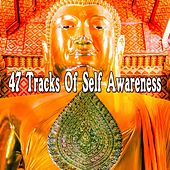 47 Tracks Of Self Awareness von Lullabies for Deep Meditation