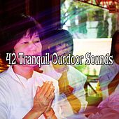 42 Tranquil Outdoor Sounds von Lullabies for Deep Meditation
