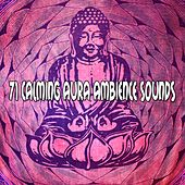 71 Calming Aura Ambience Sounds von Entspannungsmusik