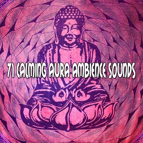 71 Calming Aura Ambience Sounds von Entspannungsmusik