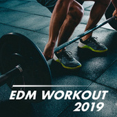 EDM Workout 2019 by Various Artists