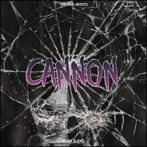 Cannon van Various