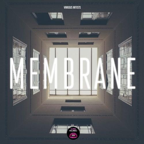 Membrane von Various