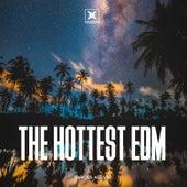 The Hottest EDM von Various