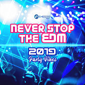 Never Stop the EDM: 2019 Party Vibes by Various Artists