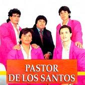 Madre del alma de Pastor de los Santos