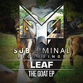 The Goat by Leaf