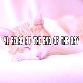 41 Relax At The End Of The Day by Nature Sound Series