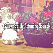 49 Tranquilly Attuning Sounds de Zen Meditate