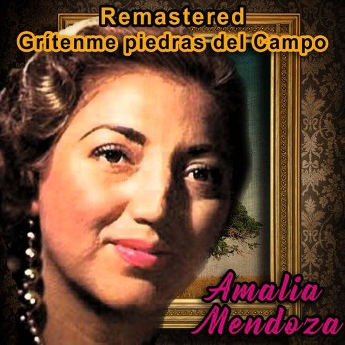 Grítenme piedras del campo (Remastered) by Amalia Mendoza