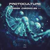 Break Out (Shadow Chronicles Remix) de Protoculture