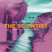 The Scientist (Shapeless Remix) (Radio Mix) de Joy Corporation