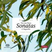 Late Piano Sonatas & Bagatelles de Josep Colom