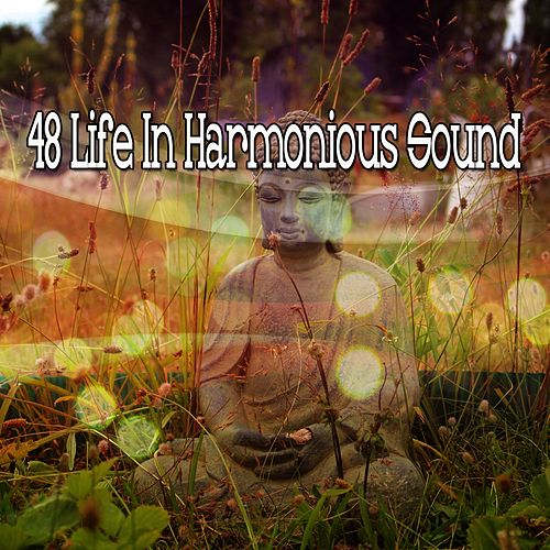 48 Life In Harmonious Sound by Yoga Music
